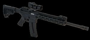 AR-15 Smith & Wesson .22LR